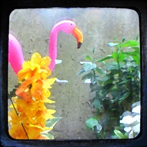 My Flamingo With a Lovely Paint Filter